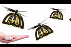 Embedded thumbnail for Le api verranno sostituite dai robot?