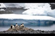 Embedded thumbnail for Caldo record in Antartide